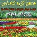 مجتمع گل و گیاه یاس