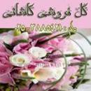 گل فروشی کاشانی