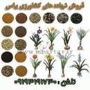فروش نهاده های کشاورزی یاس
