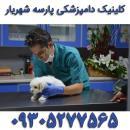 کلینیک دامپزشکی پارسه شهریار