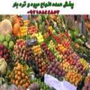 پخش عمده انواع میوه و تره بار تازه